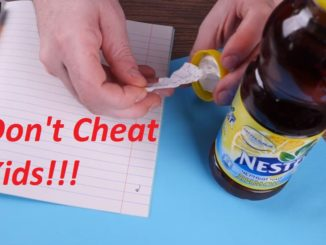 Don't Cheat in School Kids